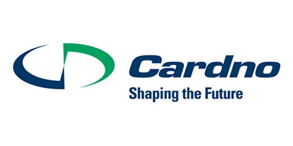 CARDNO EMERGING MARKETS USA, LTD - BRANCH