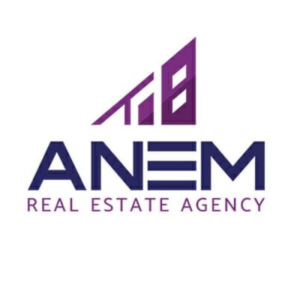 Anem Real Estate